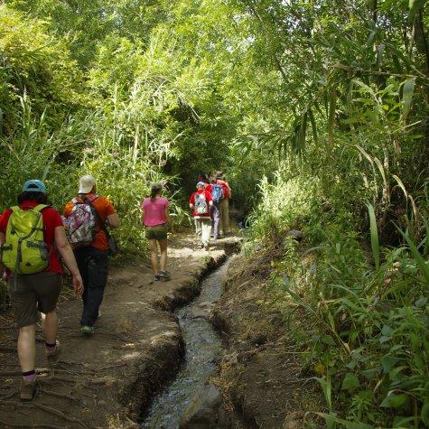 Hiking through the Barranco de los Cernícalos